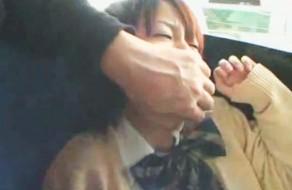 imagen Colegiala con el coño peludo violada en el autobus