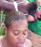 imagen Orgia de sexo en la sabana africana