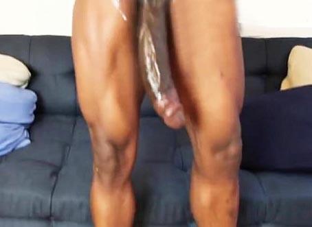 Las vergas mas grandes