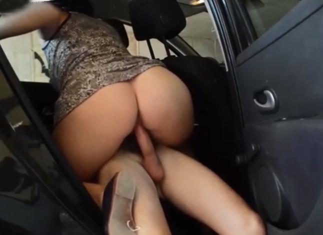 Follando en el carro